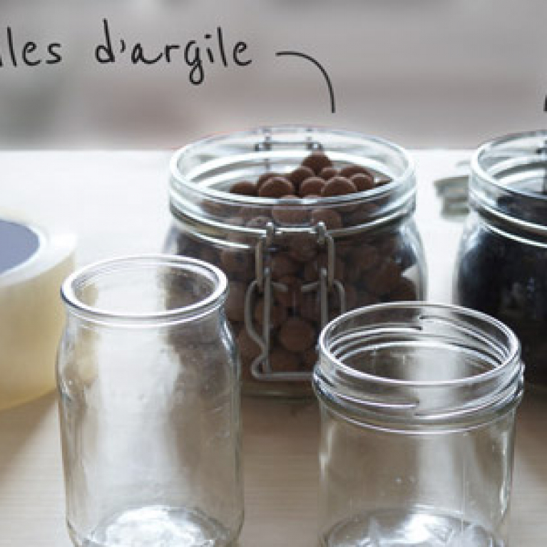 P'tit Building - DIY réaliser facilement un mini jardin d'avocatiers